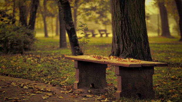 pictures-autumn-bench-effect-p-48266